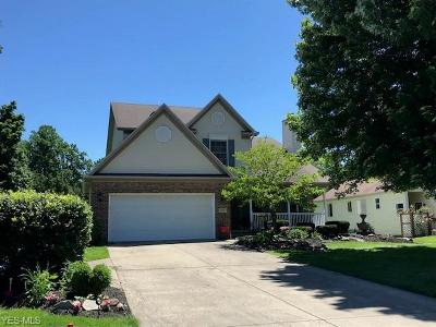 Painesville OH Single Family Home Active Under Contract: $209,900