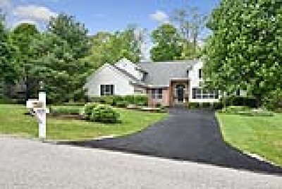 Chagrin Falls Single Family Home For Sale: 8100 Bainbrook Drive