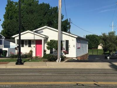 Stark County Commercial For Sale: 721 N Main Street
