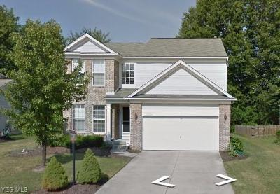 Olmsted Falls Single Family Home Active Under Contract: 9042 Huxley Lane #13