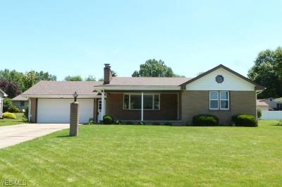 Poland Single Family Home Active Under Contract: 8463 Van Drive