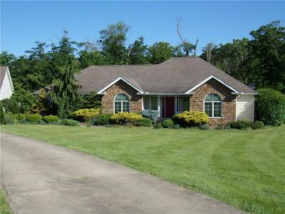Columbiana County Single Family Home For Sale: 28118 Misty Morning Lane