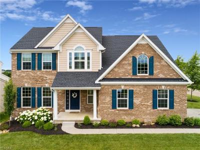Massillon Single Family Home For Sale: 4307 Chevron Circle