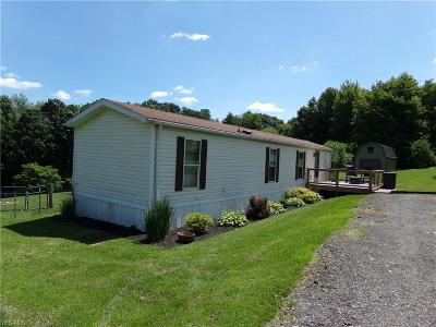 East Liverpool Single Family Home For Sale: 46704 Bell School Road