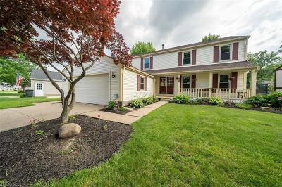 Painesville OH Single Family Home For Sale: $214,900