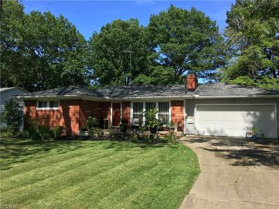 Mahoning County Single Family Home For Sale: 4256 Staatz Drive