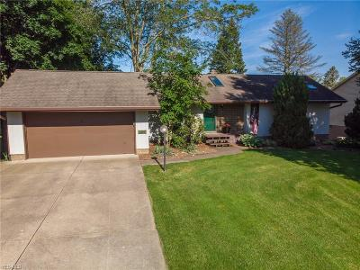 Stark County Single Family Home Active Under Contract: 548 Lakeview Drive