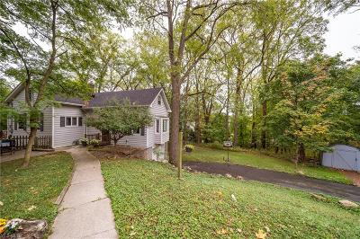 Lake County Single Family Home For Sale: 35166 Ridge Road