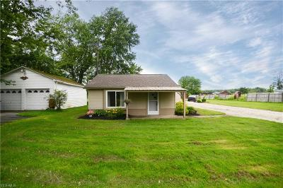 Canfield Single Family Home For Sale: 10678 Detwiler Road