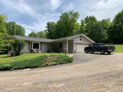 Muskingum County Single Family Home For Sale: 8890 Maysville Pike