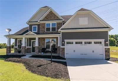 Avon Single Family Home For Sale: 3165 Fairview Drive