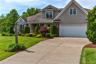 Madison Single Family Home For Sale: 5135 Turnbury Drive