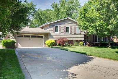Broadview Heights Single Family Home For Sale: 3665 Russett Drive