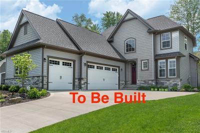 Chagrin Falls Single Family Home For Sale: 7422 Villa Ridge