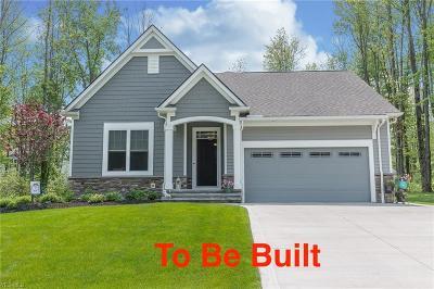 Chagrin Falls Single Family Home For Sale: 7442 Villa Ridge