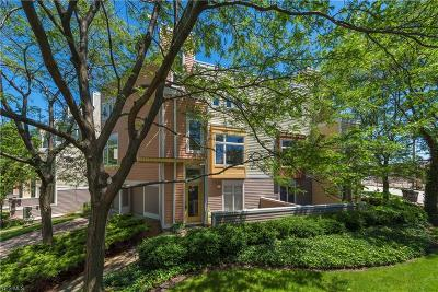 Cleveland Condo/Townhouse For Sale: 1349 W 49th Street