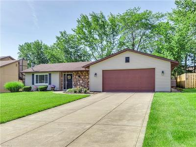 Strongsville Single Family Home For Sale: 13525 Olde Orchard Road