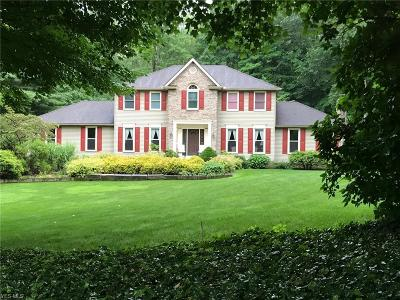 Copley Single Family Home For Sale: 3941 Foxtail Trail