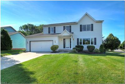 Solon Single Family Home Active Under Contract: 32778 S Roundhead Drive