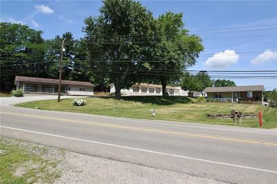 Zanesville Single Family Home For Sale: 3995 East Pike