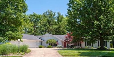 Meadowood Single Family Home For Sale: 21307 Briar Bush Lane