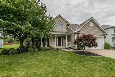 Strongsville OH Single Family Home For Sale: $265,000
