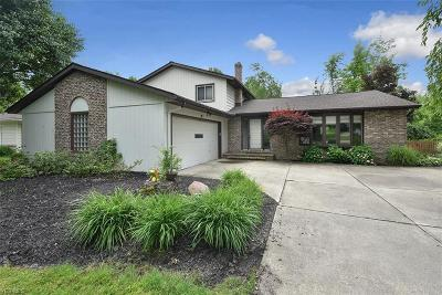 Solon Single Family Home For Sale: 37510 Bunker Hill Drive