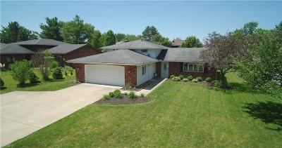 Strongsville Single Family Home For Sale: 18076 Howe Road