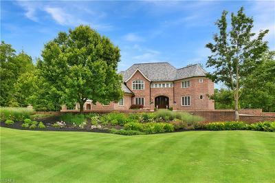Aurora Single Family Home For Sale: 435 Berwick Circle