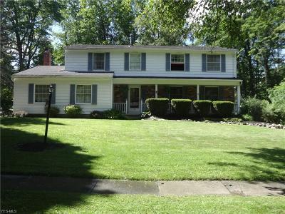 Medina Single Family Home For Sale: 890 Deepwood Drive