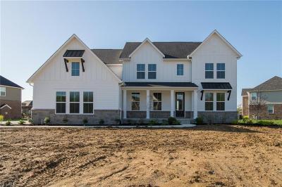 North Royalton Single Family Home For Sale: 10655 Angelina Drive