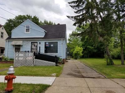 Cleveland Single Family Home For Sale: 10602 Prince Avenue