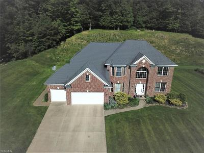 North Royalton Single Family Home For Sale: 10765 Montauk Point