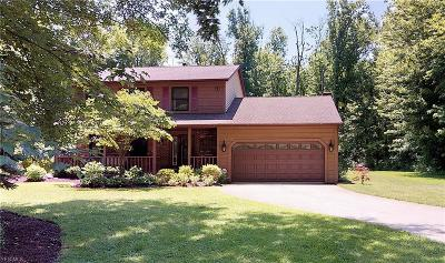 Single Family Home For Sale: 8980 Hendricks Road