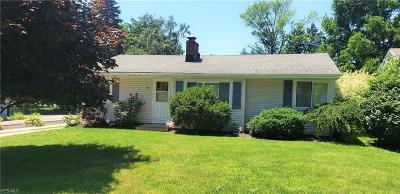 Geneva Single Family Home For Sale: 310 Morrison Street