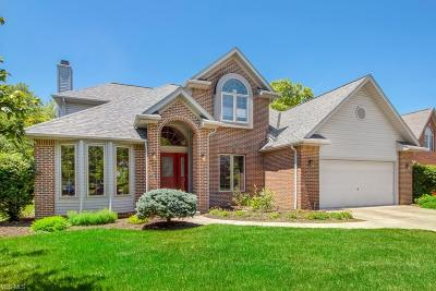 Strongsville Single Family Home For Sale: 9622 Nicole Circle