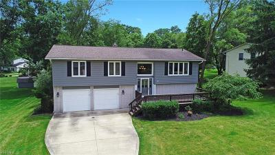 Brecksville Single Family Home For Sale: 10071 Hickory Ridge Drive