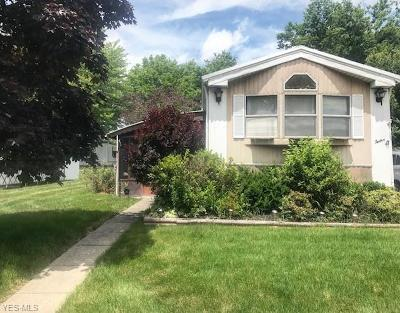 Olmsted Falls Single Family Home For Sale: 12 Sycamore Drive