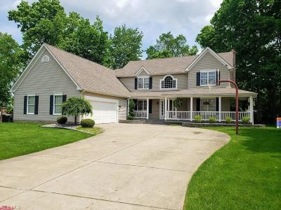 Boardman Single Family Home For Sale: 7685 Winterberry Drive