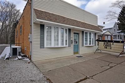 Stark County Commercial For Sale: 954 Lincoln Way