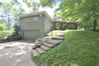 Canfield Single Family Home For Sale: 3591 Leffingwell Road