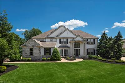 Broadview Heights Single Family Home For Sale: 9185 Ledgemont Drive