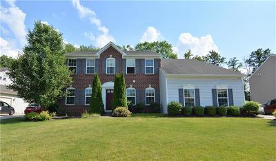 Twinsburg Single Family Home For Sale: 3208 Saint Mikala Court