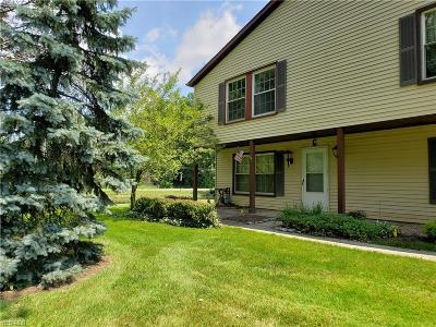 Reminderville Condo/Townhouse For Sale: 3417 Beaver Trail #C