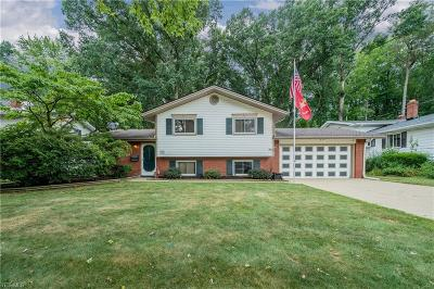 North Olmsted Single Family Home For Sale: 5224 Hampton Drive