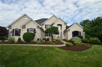 Medina Single Family Home For Sale: 6358 Burrow Court