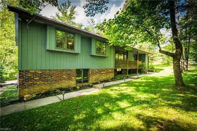 Hinckley Single Family Home For Sale: 82 River Road