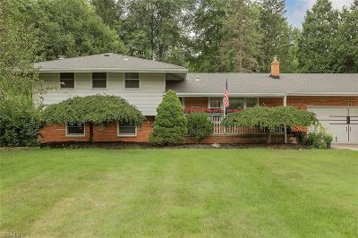 Solon Single Family Home For Sale: 34305 Pettibone Road