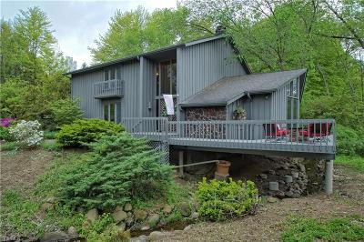 Pepper Pike Single Family Home For Sale: 31049 Gates Mills Boulevard