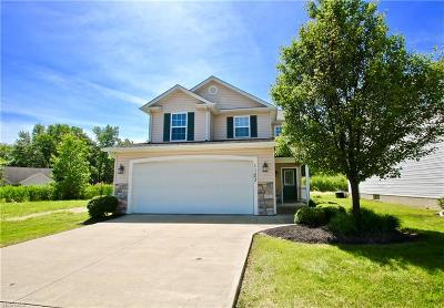 Painesville OH Single Family Home For Sale: $153,564